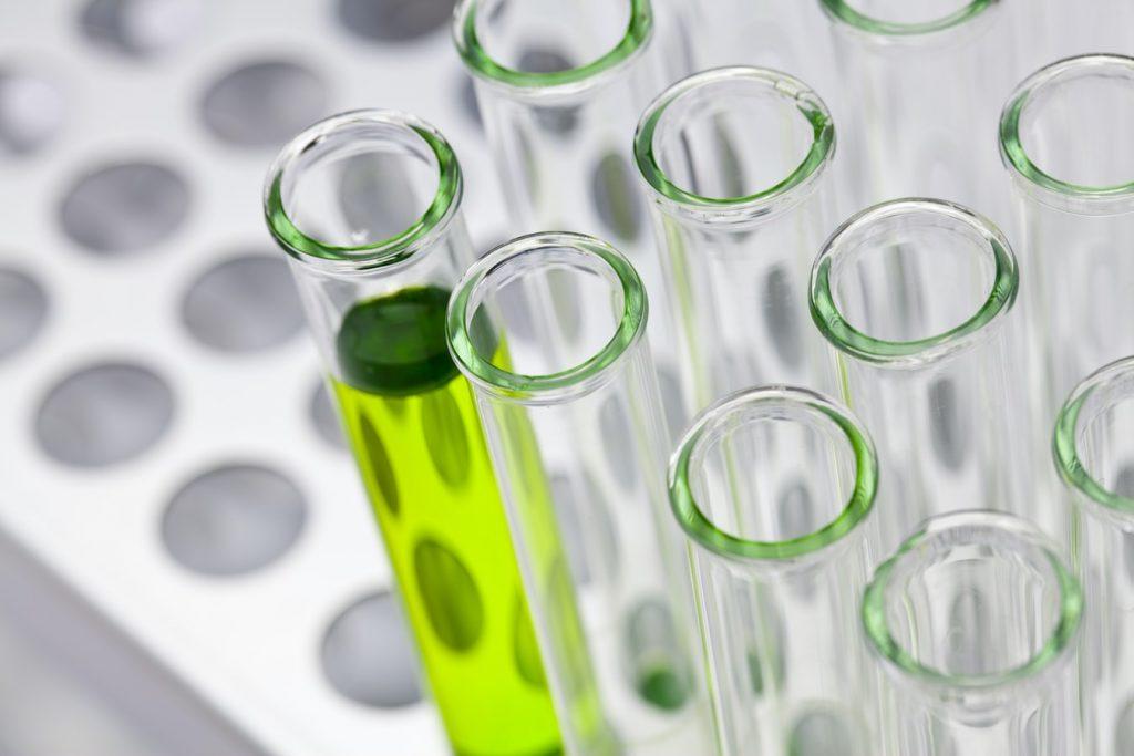A matcha tea hatása laborokban került vizsgálat alá